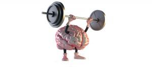 Avez vous un cerveau musclé